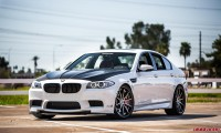 f10m5ss_small-1